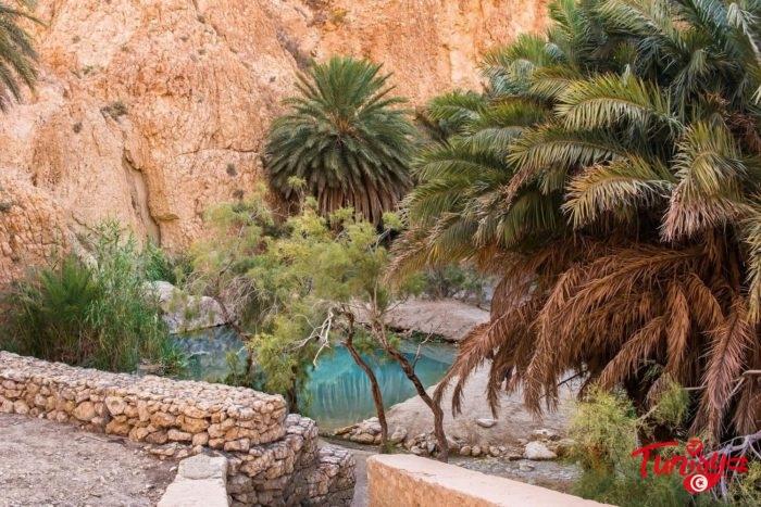 Unpredictable Tour in the South of Tunisia